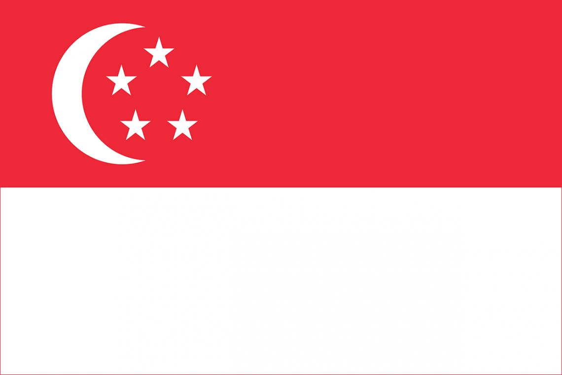 Team Lifa, Singapore